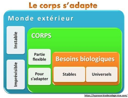 Le corps s'adapte2